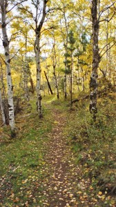 photo black hills hiking trail
