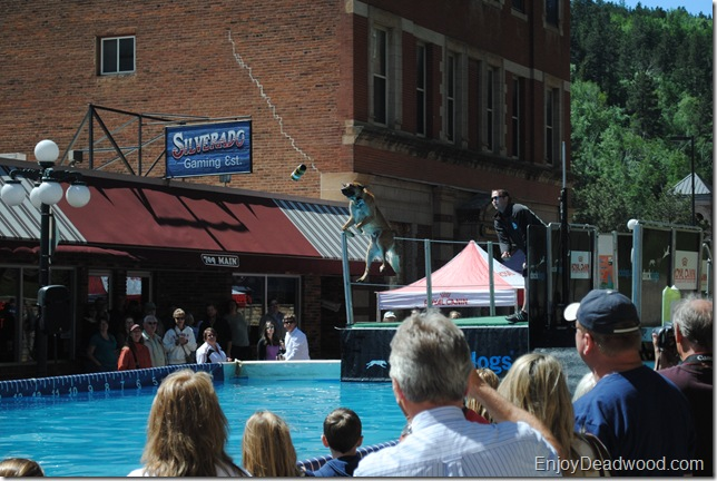 photo DockDogs Deadwood SD